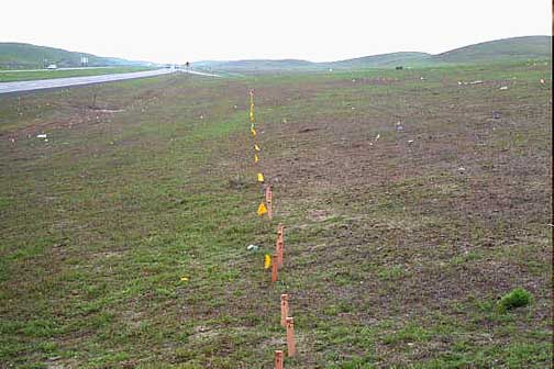 Dunnigan Hills test plot