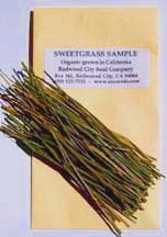 Sweetgrass sample